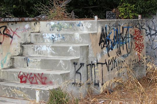 Graffito Steps