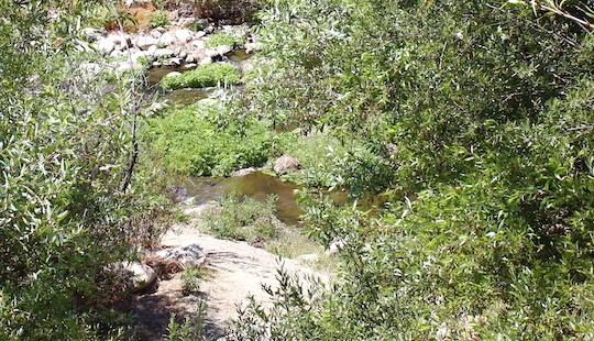 V River Flow png